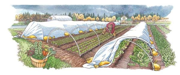 Two-Row-Low-Hoop-Tunnels